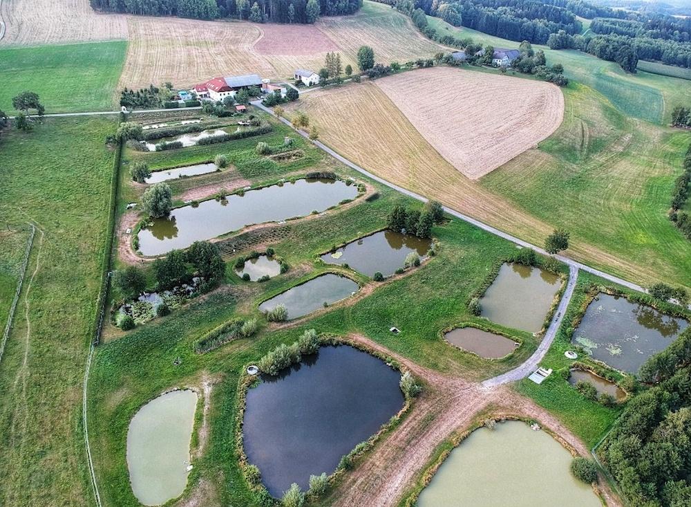 Flugaufnahme Teichanlage